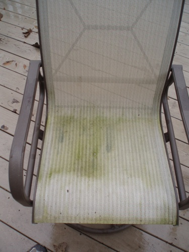 How To Clean And Remove Mold Amp Mildew From Outdoor Patio