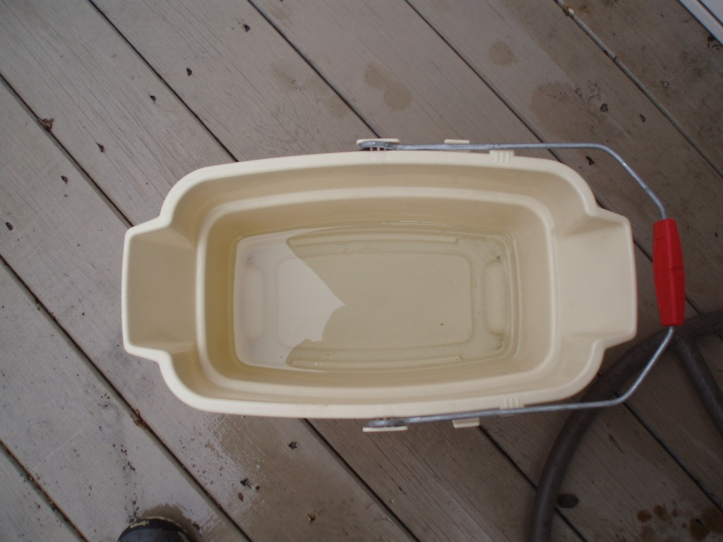 Bucket Of Water With Oxiclean Picture Image Photo